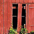 Weathered Red Barn Window Of New Jersey by David Letts