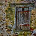 Weathered Vibrancy by Susan Candelario