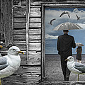 Weathering The Gulls by Randall Nyhof