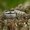 Wedding Bands And Fence Post 12 by Douglas Barnett