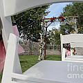 Wedding by Diane Greco-Lesser