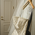 Wedding Dress by Ned Frisk