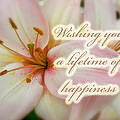 Wedding Happiness Greeting Card - Lilies by Mother Nature