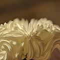 Wedding Star by Teresa Blanton