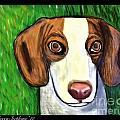 Wee Beagle by Rebecca Stephens