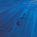 Weightless Waters by Jackie Novak