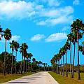 Welcome To Florida by Laura Holt