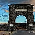 Welcome To Yellowstone by Carolyn Fox