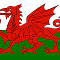 Welsh National Flag by Steev Stamford