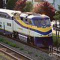 West Coast Express by Randy Harris