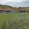 West Virginia Barn 3212 by Michael Peychich