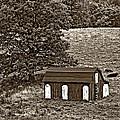 West Virginia Sepia by Steve Harrington