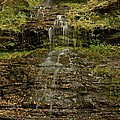West Virginia Waterfall by Michael Peychich
