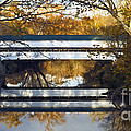 Westport Covered Bridge - D007831a by Daniel Dempster