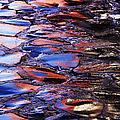 Wet Cobblestone Road by Jeremy Woodhouse