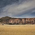 Wheatfield Zion National Park by Hugh Smith