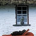 Wheelbarrow In Front Of A Window Of A by The Irish Image Collection