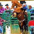 When Cowboys Take Notice by Cheryl Poland