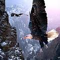 Where Eagles Dare by Bill Stephens