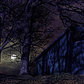 While We Sleep by John Herzog