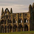 Whitby Abbey by Martin Cooper
