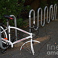 White Bicycle . 7d10119 by Wingsdomain Art and Photography