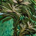 White Bird Of Paradise Tree by Marie Bulger