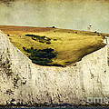 White Cliffs Lighthouse by Joan McCool