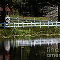 White Fence by Mitch Shindelbower