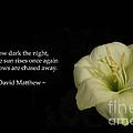 White Lily In The Dark Inspirational by Ausra Huntington nee Paulauskaite