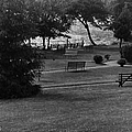 White Roe Lake Hotel - Livingston Manor Ny - Lawn To Lake by Ericamaxine Price