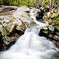 White Water by Greg Fortier