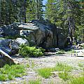 White Wolf Camping Ground by M Valeriano