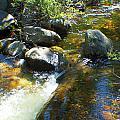 White Wolf Creek by M Valeriano