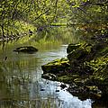 Whitewater River Spring 11 by John Brueske