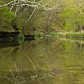 Whitewater River Spring 13 by John Brueske