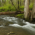 Whitewater River Spring 18 by John Brueske