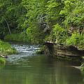 Whitewater River Spring 5 B by John Brueske