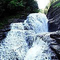 Whittaker Falls Ny by Dennis Comins