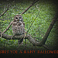 Whoooo Wishes  You A Happy Halloween - Greeting Card - Owl by Mother Nature