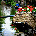 Wicker Bike Basket With Flowers by Lainie Wrightson