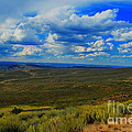 Wide Open Wyoming Sky by Donna Greene