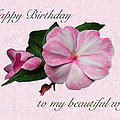 Wife Birthday Greeting Card - Pink Impatiens Blossom by Mother Nature