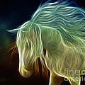 Wild Horse by Jutta Maria Pusl