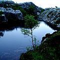 Wild Nature In Norway by Colette V Hera  Guggenheim