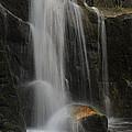 Wildcat Falls Yosemite National Park by Floyd Hopper