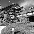 Wilderness Lodge Resort Beach Walt Disney World Prints Black And White by Shawn O'Brien