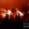 Wildfire by Mike Nellums