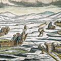 Willem Barents (c1550-1597) by Granger