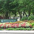 William And Mary. Williamsburg. Virginia. by Ausra Huntington nee Paulauskaite